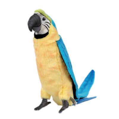 3068번 청금강앵무 Gold Blue Macaw/72cm.H