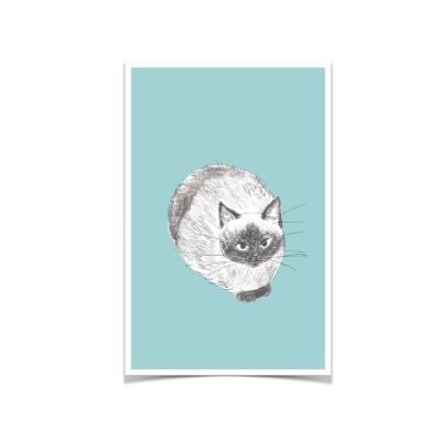 고양이 엽서 민트
