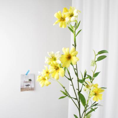 고속터미널꽃시장 리늄 캄파눌라 63cm 시들지않는꽃