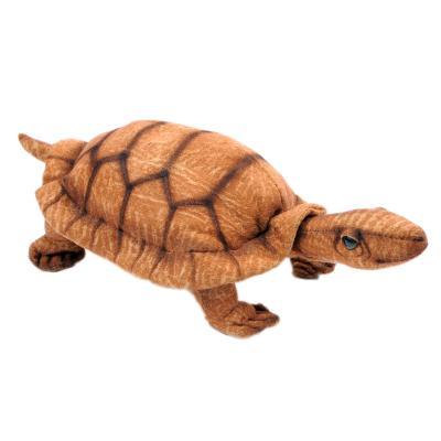 4206번 거북이 Turtle/ 22cm.L