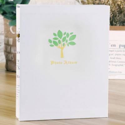 생명나무 포토앨범(4x6) (50매)