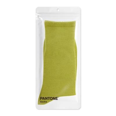 팬톤삭스 스템 Stem 단색 컬러 장목 양말