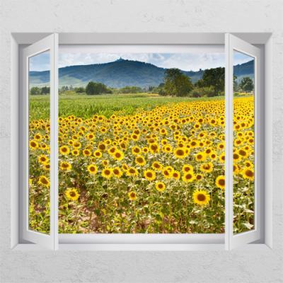 cr600-해바라기꽃전경_창문그림액자