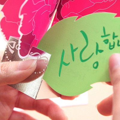 카네이션 카드 핑크