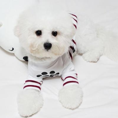 강아지옷 스트라이프 티셔츠