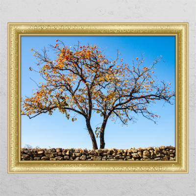 ps608-돌담과재물감나무_창문그림액자