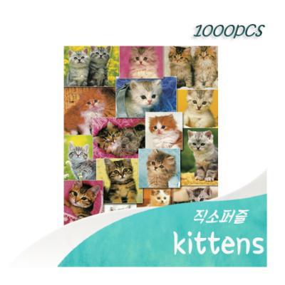 [비앤비퍼즐] 1000PCS 직소 kittens PL1255