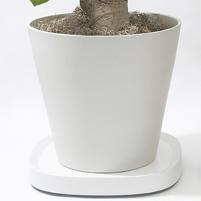 [tetto] tidy 티디 플랜테이블 화분받침대 (L)