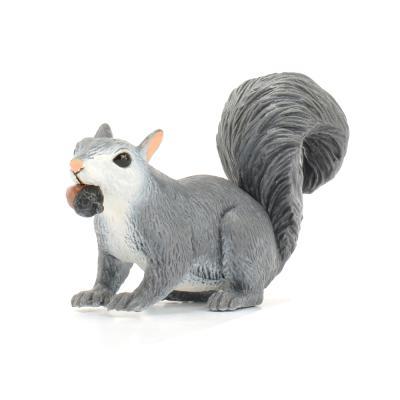 296129 회색큰다람쥐 Gray Squirrel