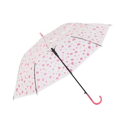 하트 패턴 반자동 장우산 / 반투명우산