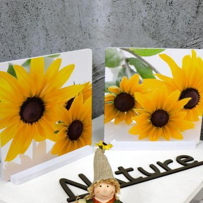 tm755-스탠드액자2P_행복한노란해바라기꽃