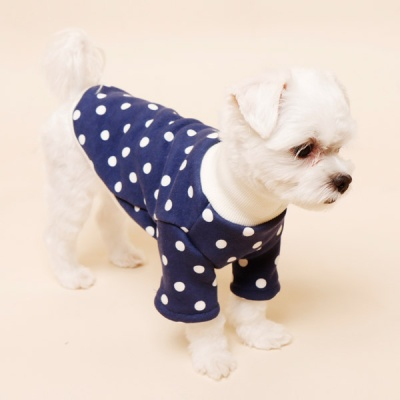 [펫딘]도트 패턴 시보리 폴라넥 강아지옷 티셔츠