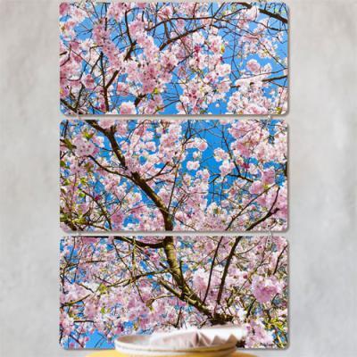 nn357-멀티아크릴액자_봄날의꽃비(3단)