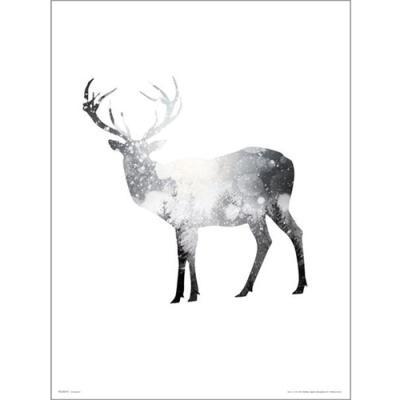PDH01397 Deer Snow Tree (40x50)