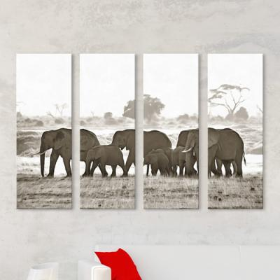 cq155-초원의코끼리가족_흑백_대형노프레임세트