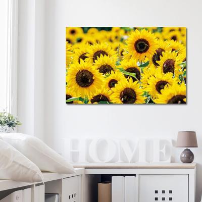캔버스액자 해바라기 노란꽃 C타입 25x40cm