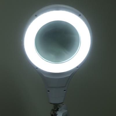 아이클 LED조명확대경 독서확대경 ICLE-8066 5배율