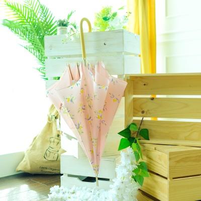 wpc우산 올리브 장우산 49698-09