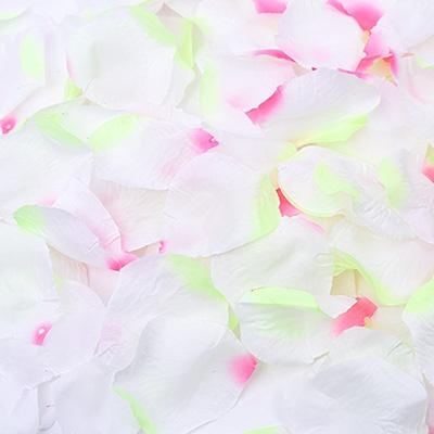플라워샤워 이벤트꽃잎 (피치)