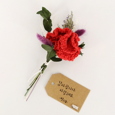 [DIY키트] 카네이션꽃 미니다발