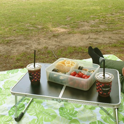휴대용 접이식 미니 캠핑 테이블 3컬러