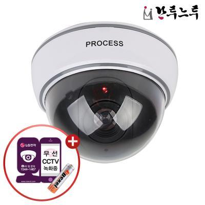 모형CCTV 가짜 감시카메라 IN11C