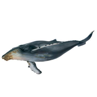 혹등고래 36cm