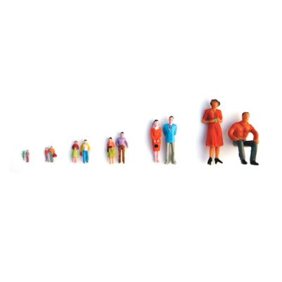 인체모형-칼라 (30명) 200:1 (봉) 101943