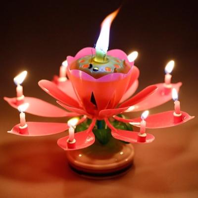 생일파티 이벤트 회전하는 멜로디 연꽃초
