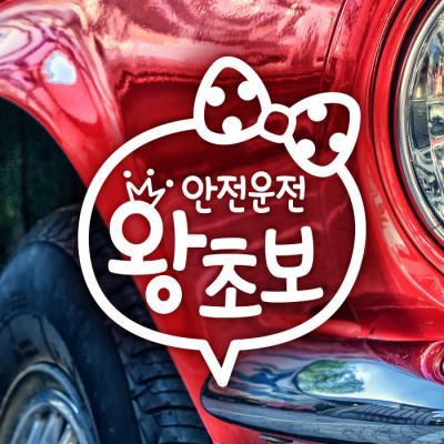 18D103 문구리본왕초보안전운전 반사