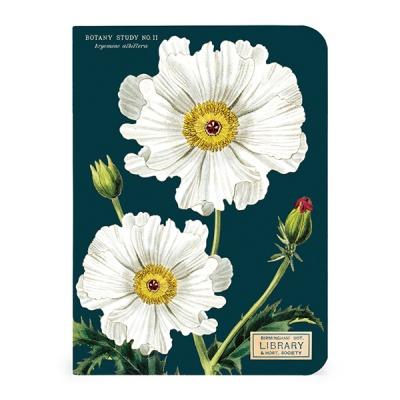 카발리니 미니 노트북 - Botany