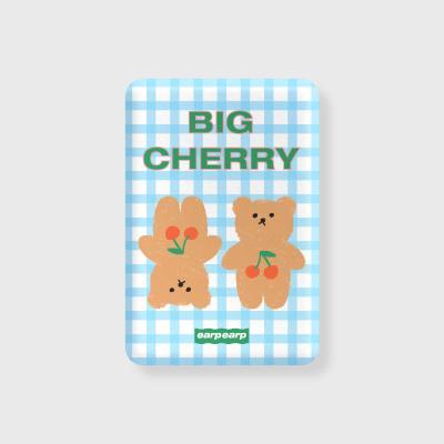 Cherry big bear-sky blue(무선충전보조배터리)
