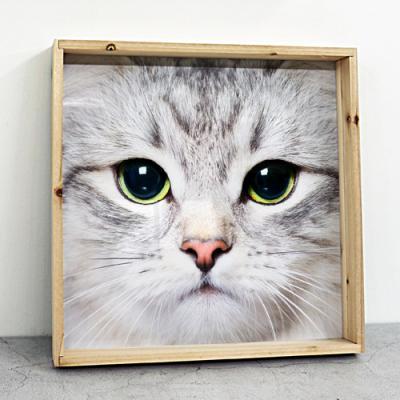 tf883-우드프레임액자_귀여운고양이얼굴확대