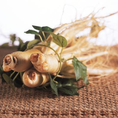 금산 울몸애 세척인삼 난발 파삼(25뿌리내)600g