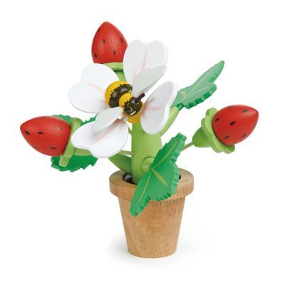 [무료배송][텐더리프]꼬마가드너 딸기꽃 화분