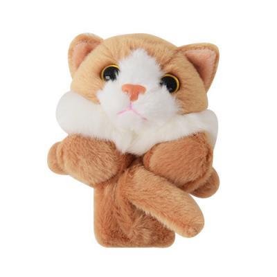 라운드펫 고양이
