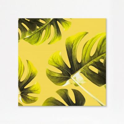 캔버스액자 자연 옐로우 몬스테라 D타입 35x55cm