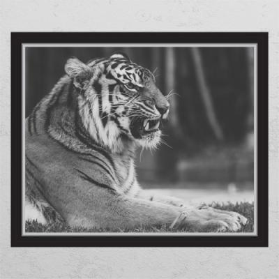 pc677-풍수흑백호랑이3_창문그림액자