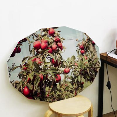 cl710-78CmX56Cm12각형대형_풍수를부르는사과나무
