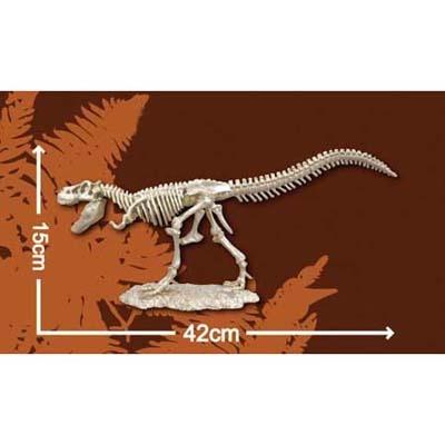 한반도공룡뼈발굴 - 타르보사우루스 [XLD1]