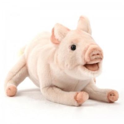 5051번 돼지 Pig Claude/30*20cm