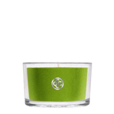 COLONIAL CANDLE 2854글래스 티라이트 캔들 에메랄드빛 전나무