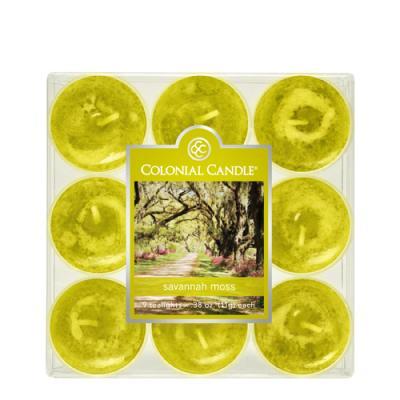 COLONIAL CANDLE 2851 티라이트 9pk 캔들 사바나 모스