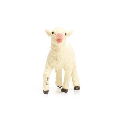 233729 새끼양 Lamb