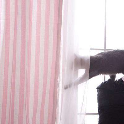 모던스트라이프 커튼  - 핑크 L(100cm*230cm)