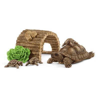 [슐라이히]거북이와 집 세트