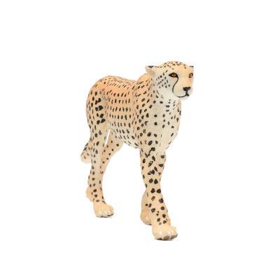 112889 치타 Cheetah