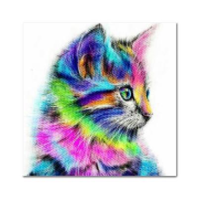 DIY 보석십자수 - 레인보우 고양이 BE12 (25x25)