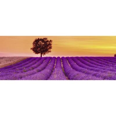 1000조각 직소퍼즐 ▶ 라벤더 향기 (RA15068)