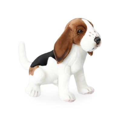 5862번 비글 Beagle/26cm.H